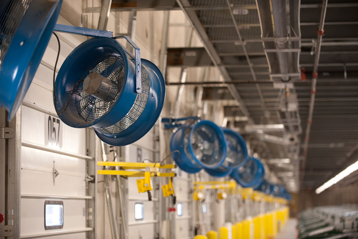 Cooling fans in commercial facility