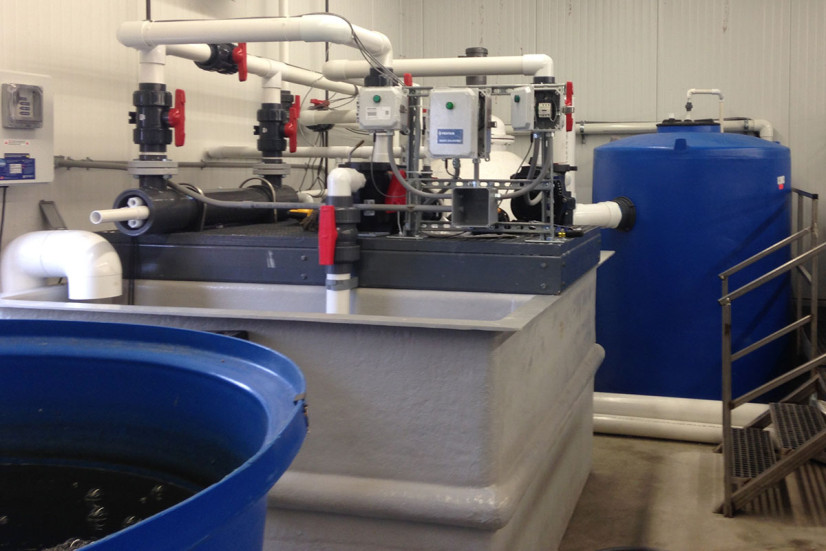 Piping for recirculating aquaculture system